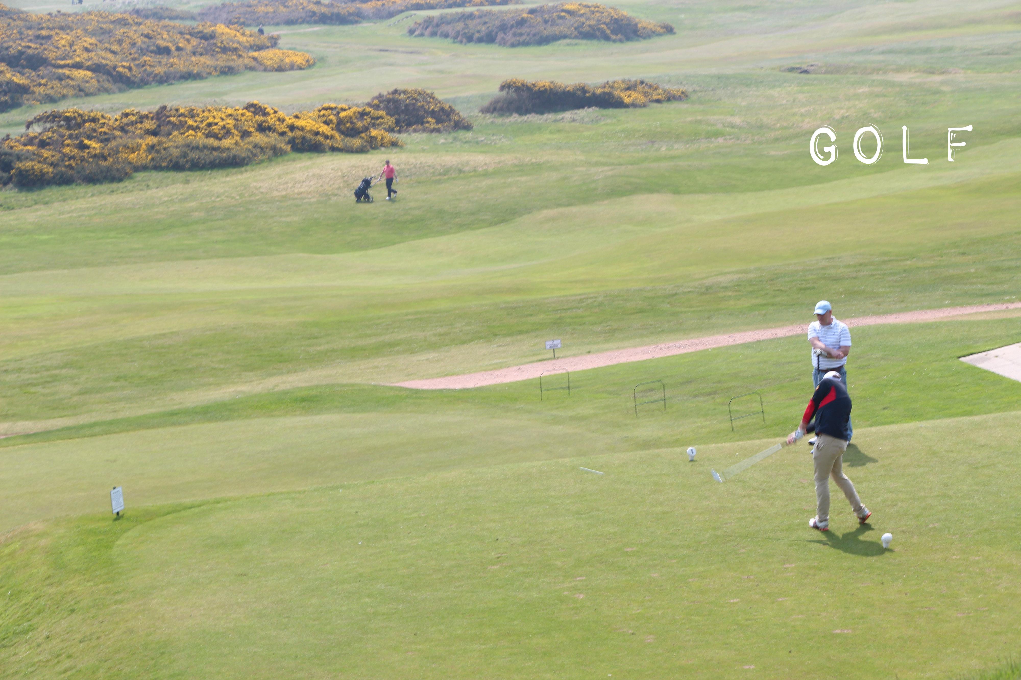 golffis.jpg