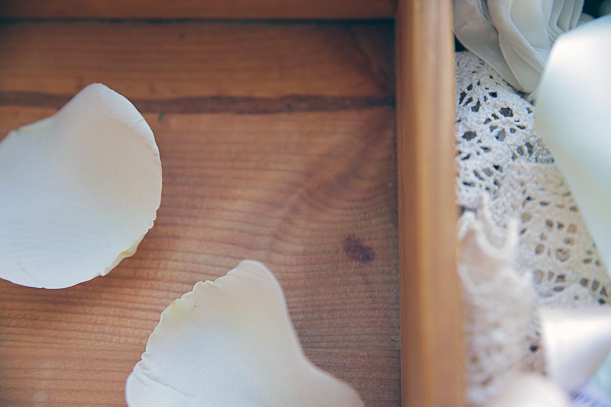 rose-petals-white_0.jpg