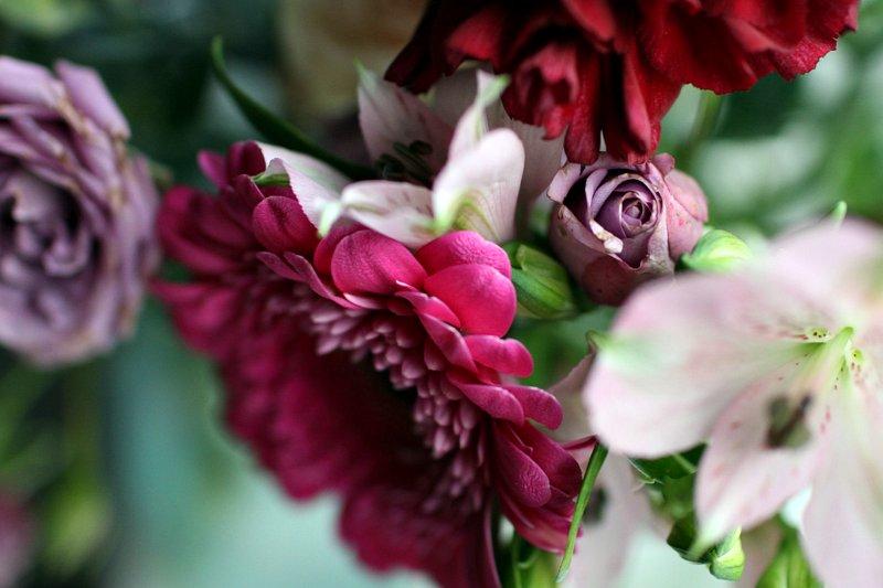 kauniita-kukkia.jpg