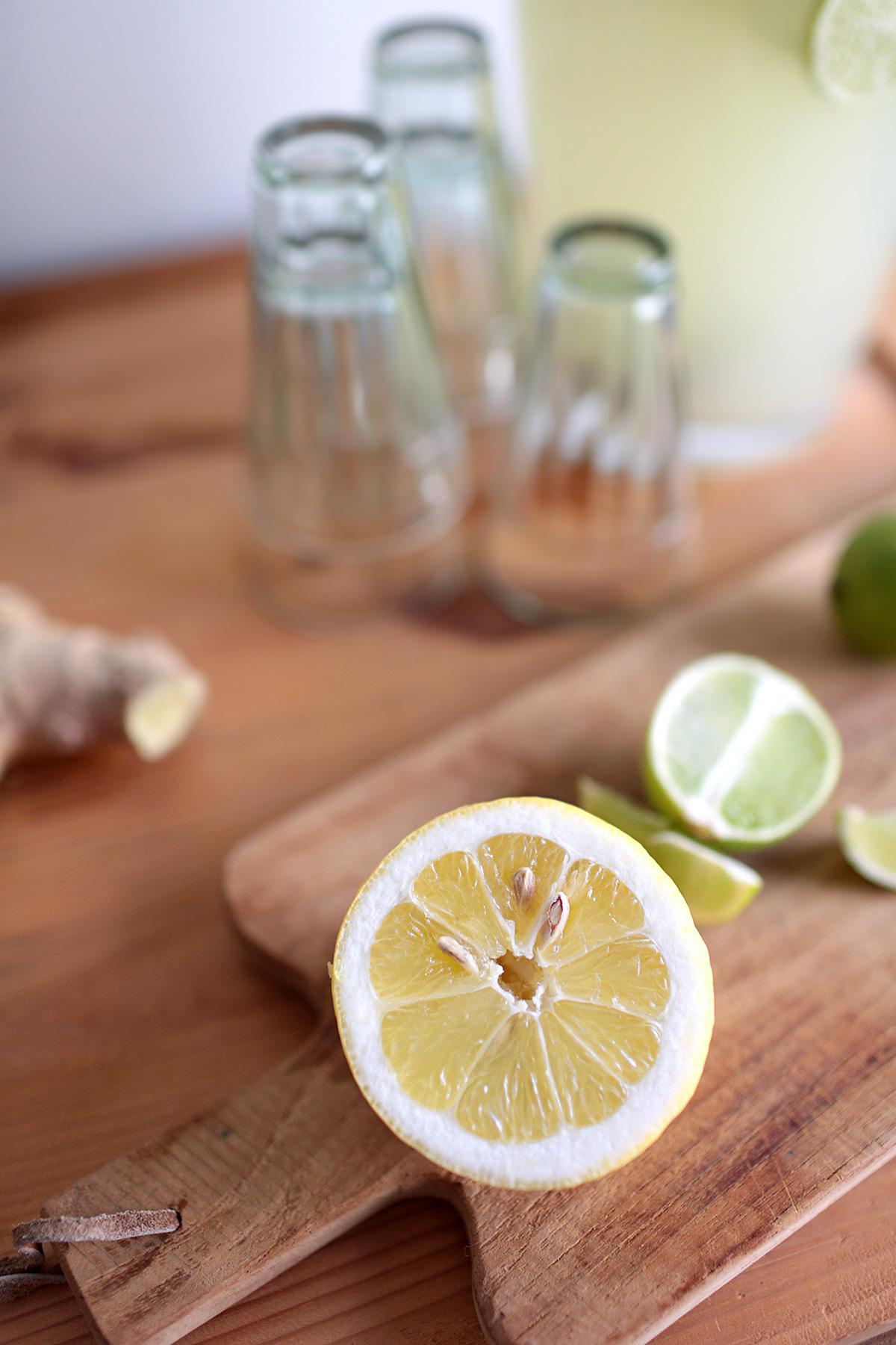 lemon-ginger-ale-recipe.jpg
