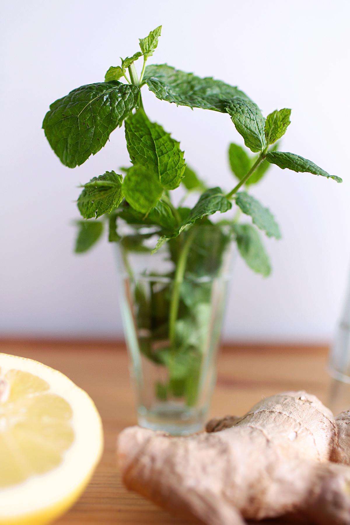 mint-leaves-punch-1.jpg
