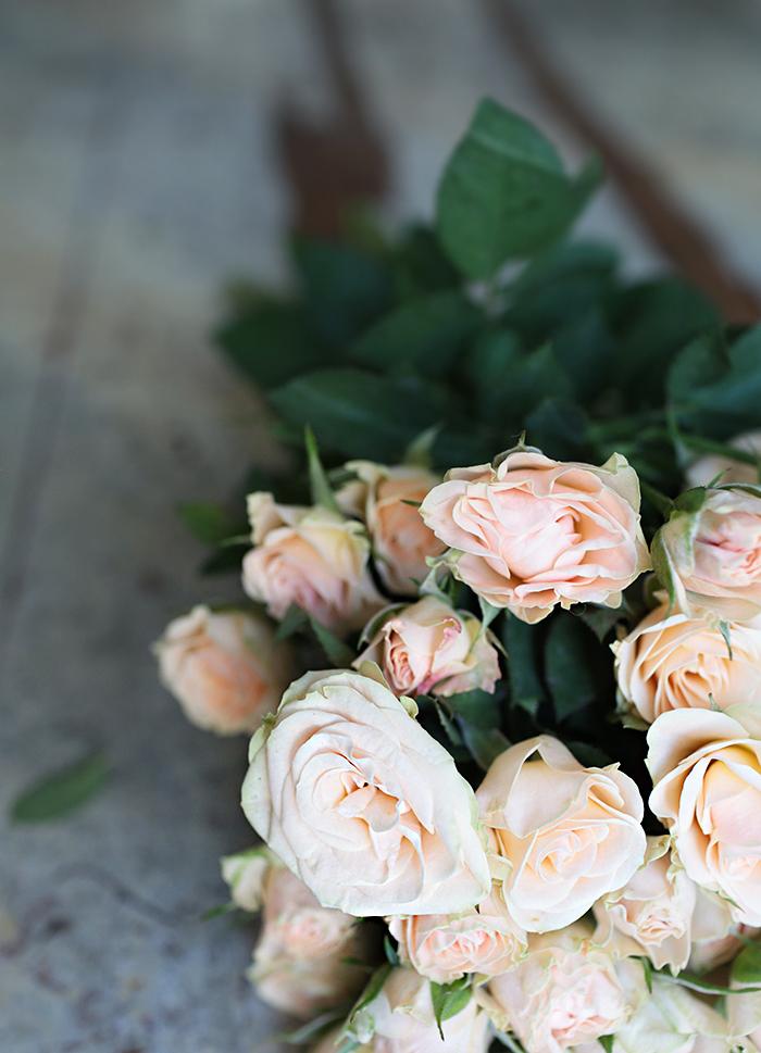 rose-bucket-peach.jpg