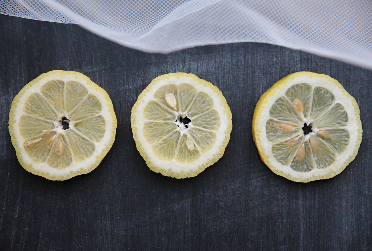 lemon-lemon-lemon.jpg