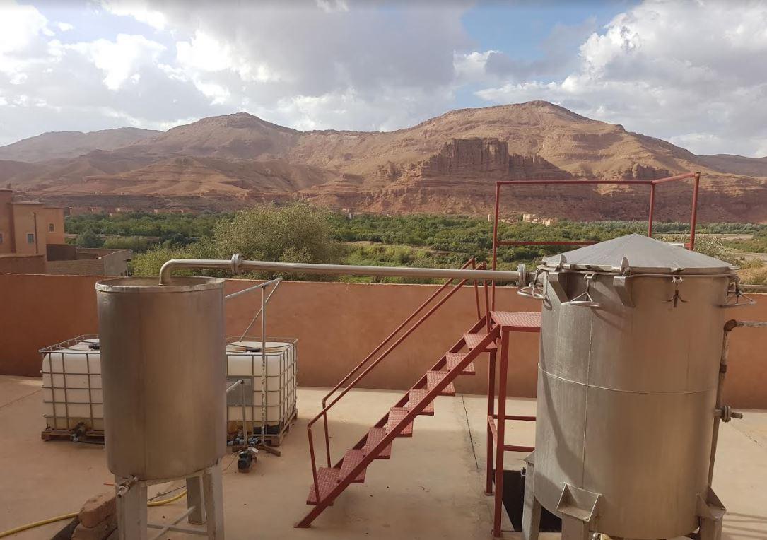 morocco_iv.jpg