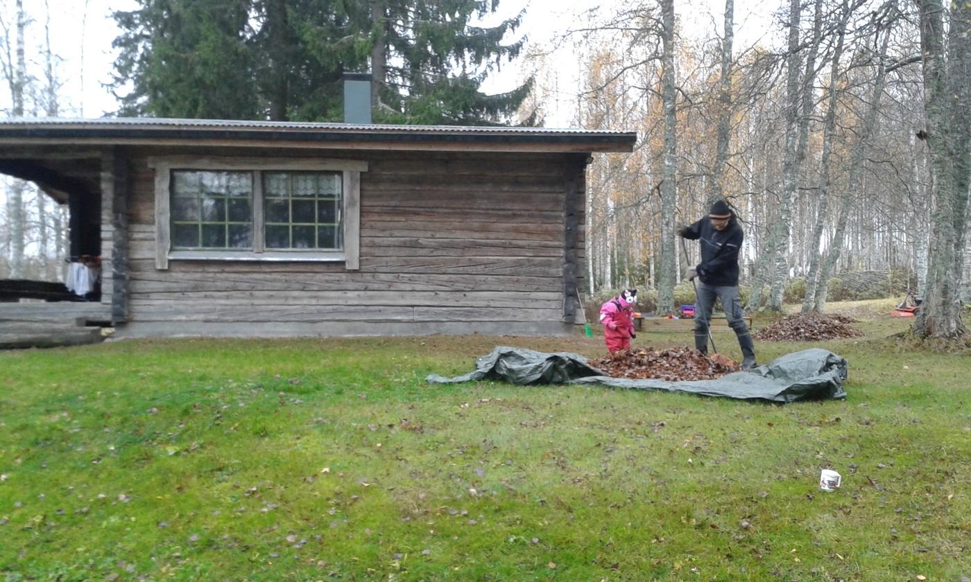 Lilja ja Lasse haravoimassa.jpg