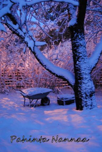 Jos ei jouluna ole lunta…
