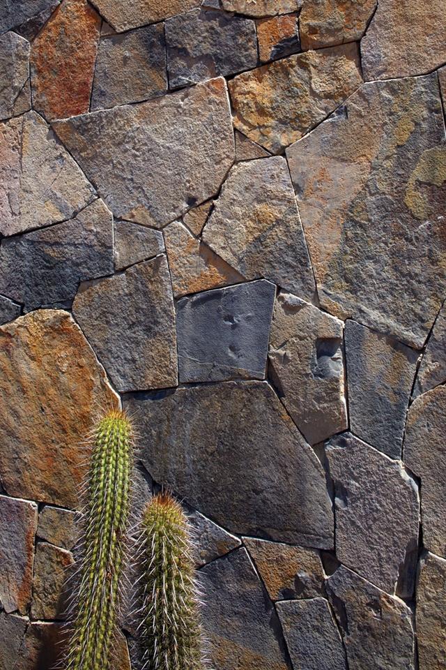 tunquen-treasure-thermal-mass-wall.jpg