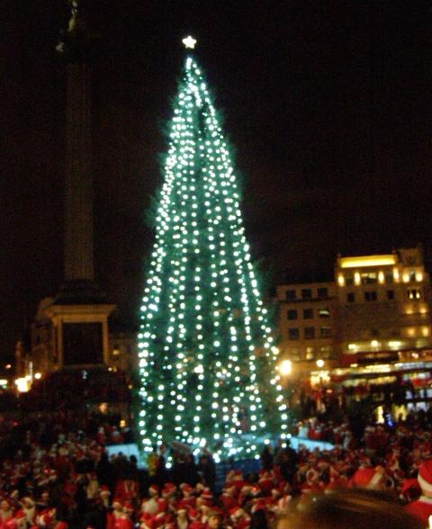 Joulukuusi Trafalgar Squarella pieni rajattu.jpg