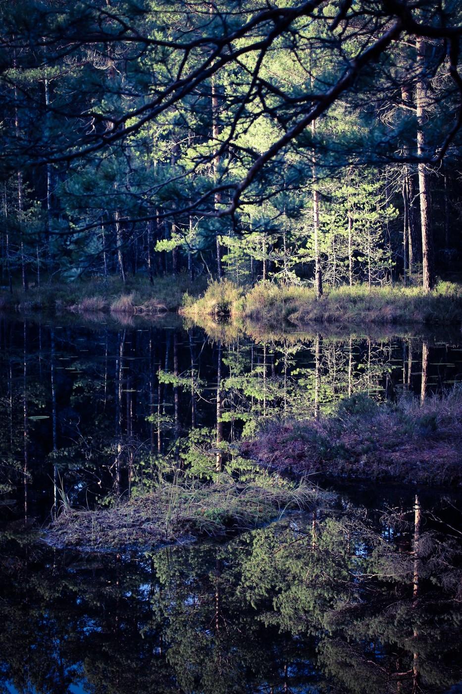 AdobePhotoshopExpress_2013_11_23_174421.jpg