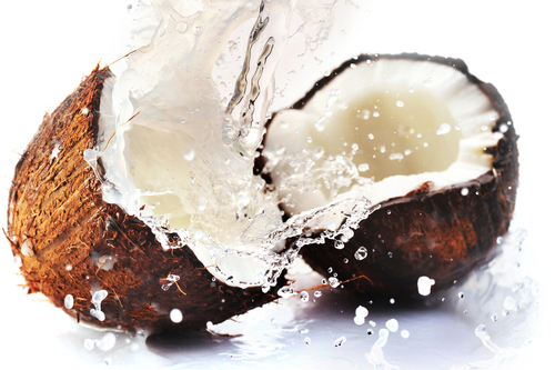 coconut3.jpg