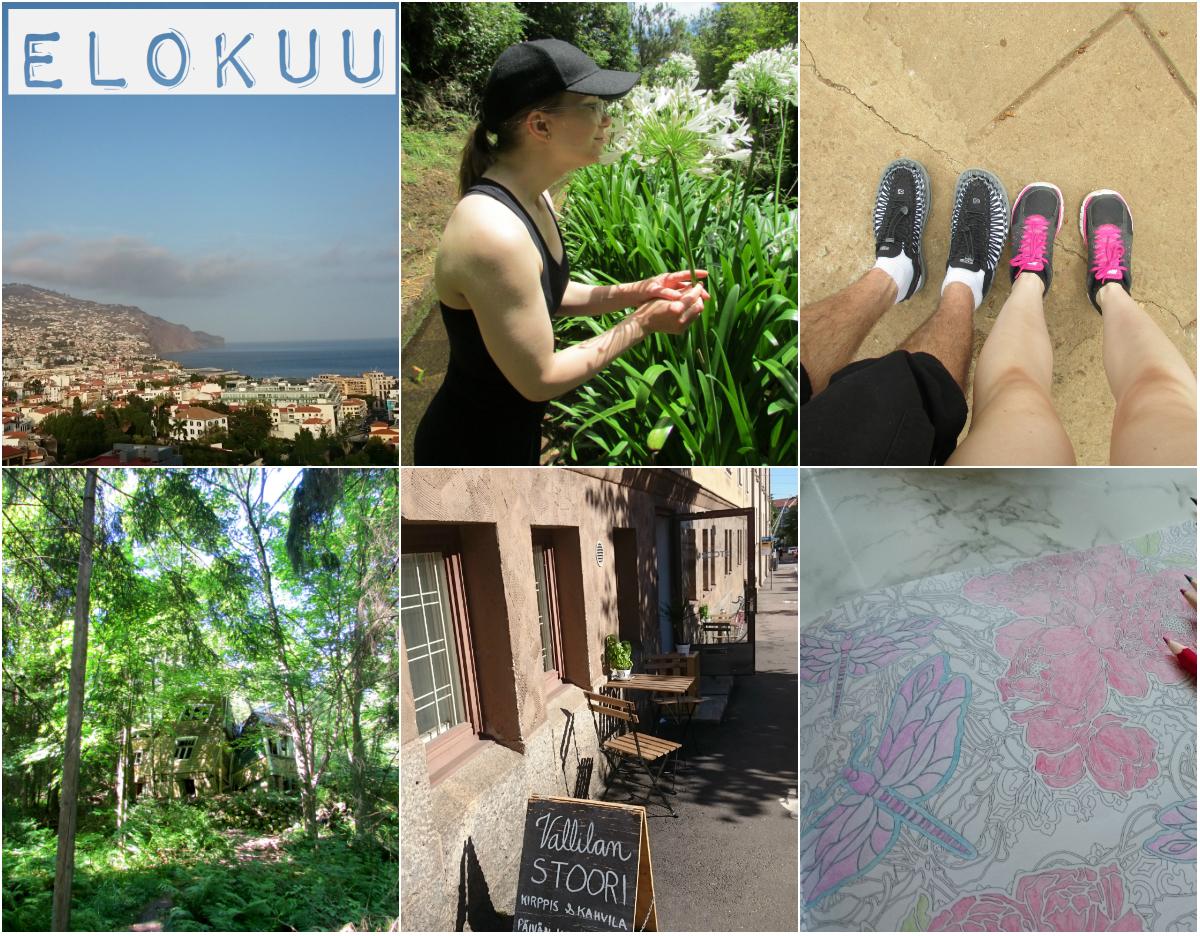 collage_elokuu.jpg