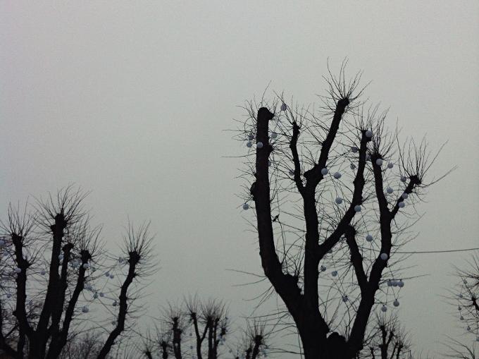 131205_1.jpg