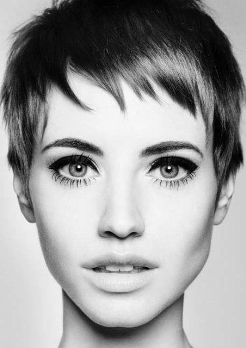 short-hair-34.jpg?w=500.jpg