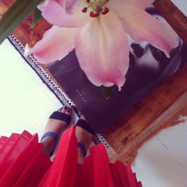 kukkaa.jpg