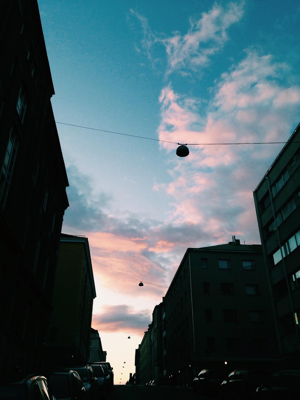 IMG_7230.jpg