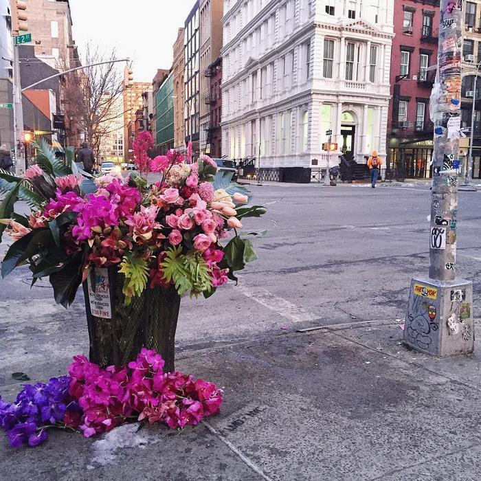 trash-cans-flowers-new-york-lewis-miller-7.jpg