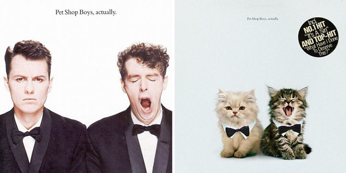 This-guy-created-very-cute-covers-of-the-music-world-replacing-singers-with-cats-5a2e625b29453__700.jpg