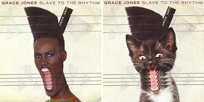 This-guy-created-very-cute-covers-of-the-music-world-replacing-singers-with-cats-5a2e627c0c99a__700.jpg