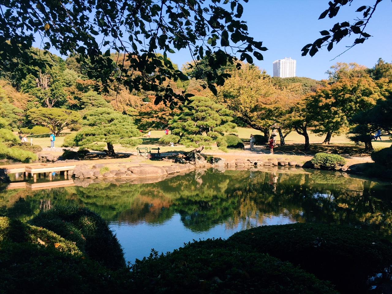 Rauhoittava metsä (tai no siis Shinjuku Gyoen National Garden)