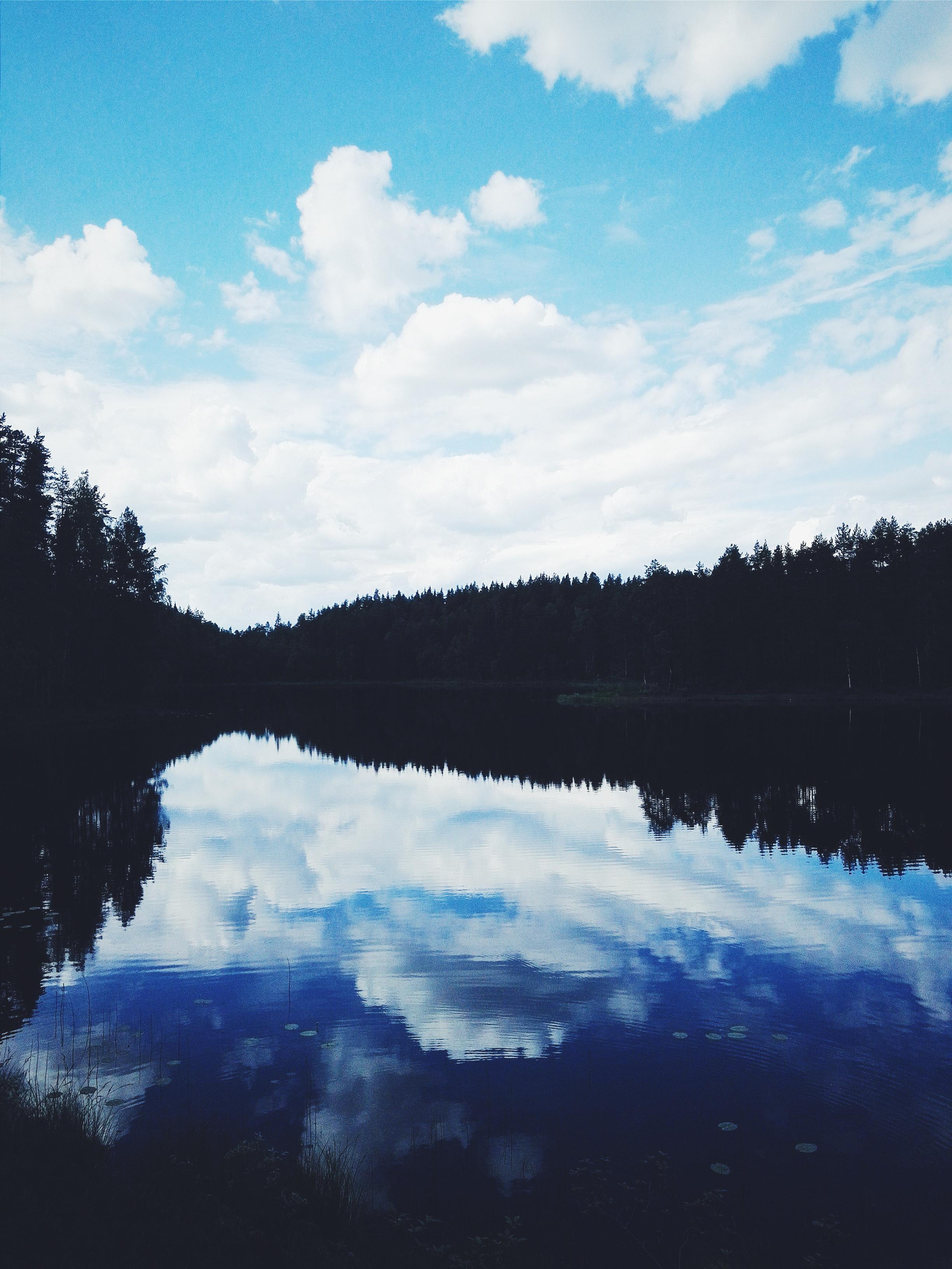 Petkeljärven kansallispuisto