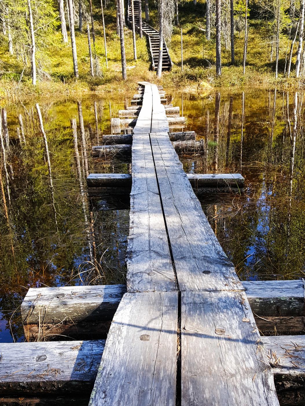 Suomen uusin kansallispuisto ja #meijänretki