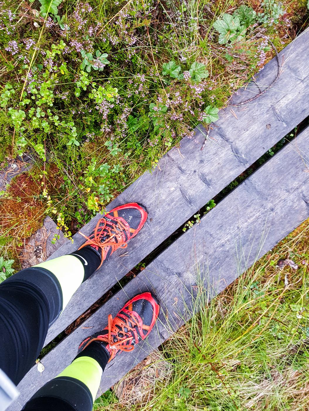 Ukkohalla Trail Run 2017 16 km
