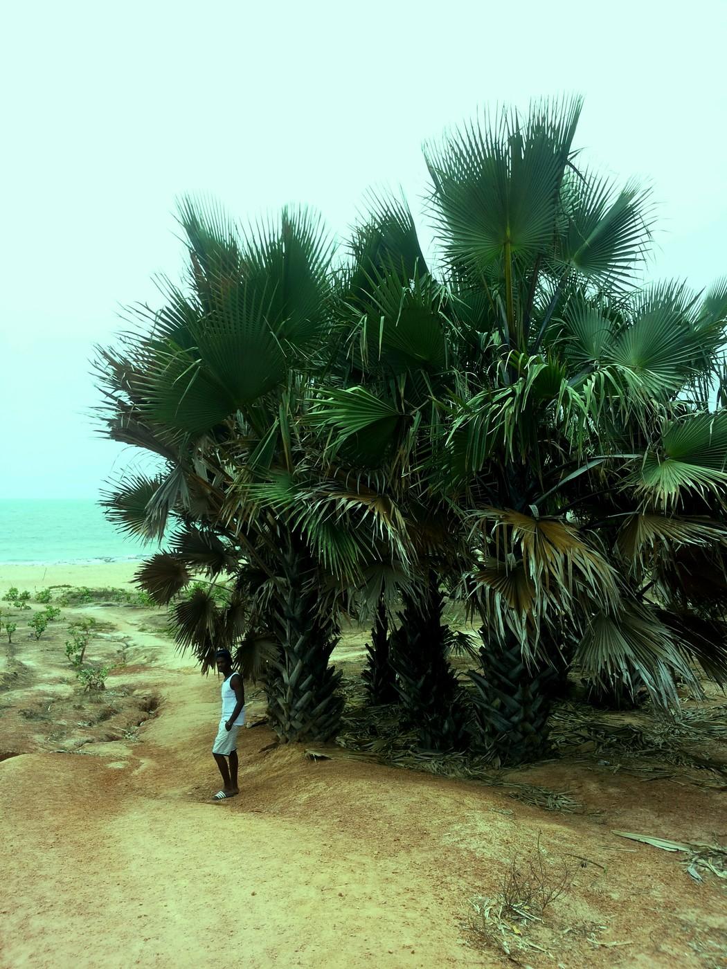 Juhannus Gambiassa -eikä kaduta