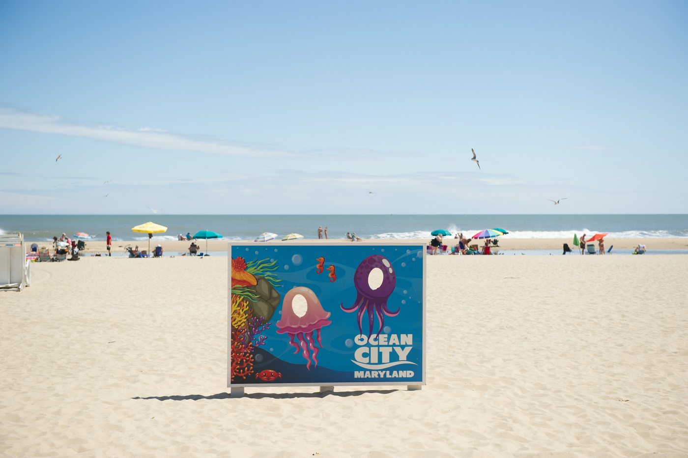 oceancity-11.jpg