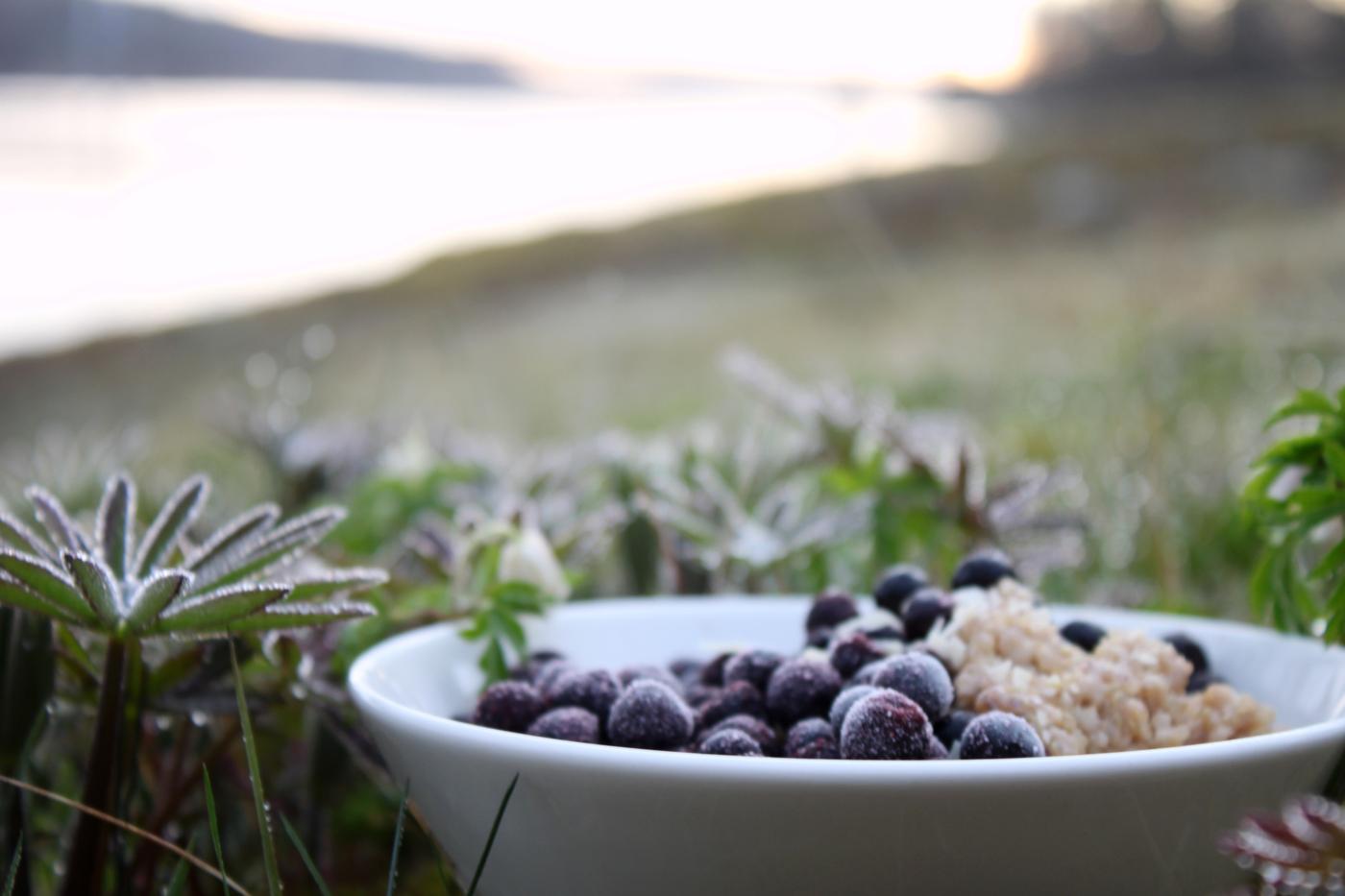 Puuromaailman kolme kovaa – kaura, kvinoa ja kookos