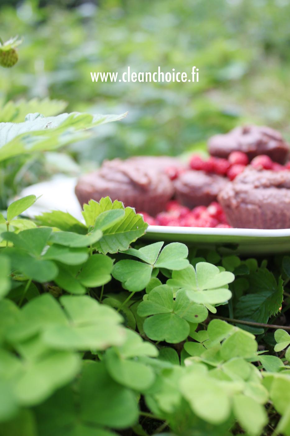 Syksy – Suklaa muffinsseja ja muuttouutisia (uusi blogiosoite)