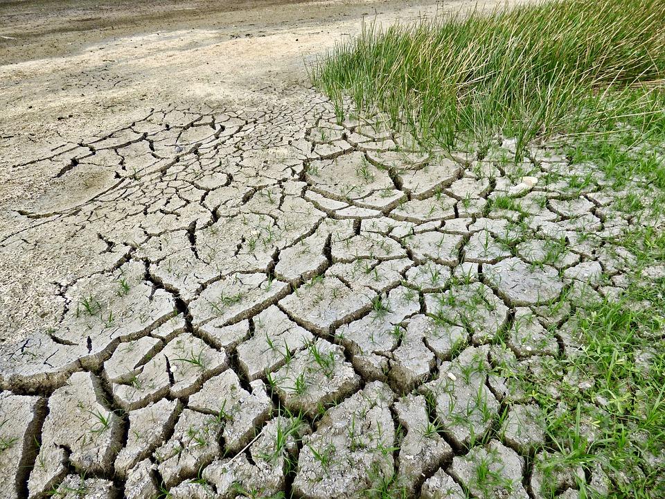 climate-change-2241061_960_720.jpg