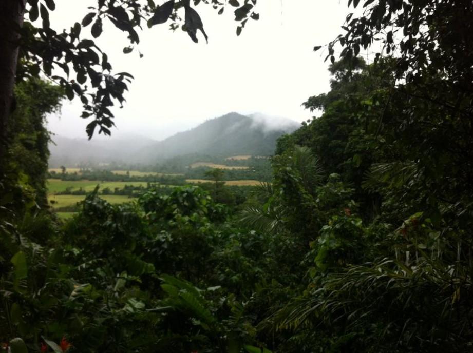 sademetsävuori.jpg