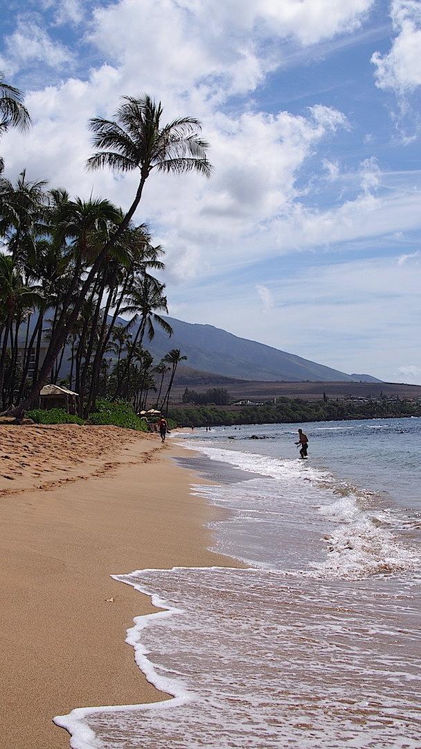 Maui_3.JPG