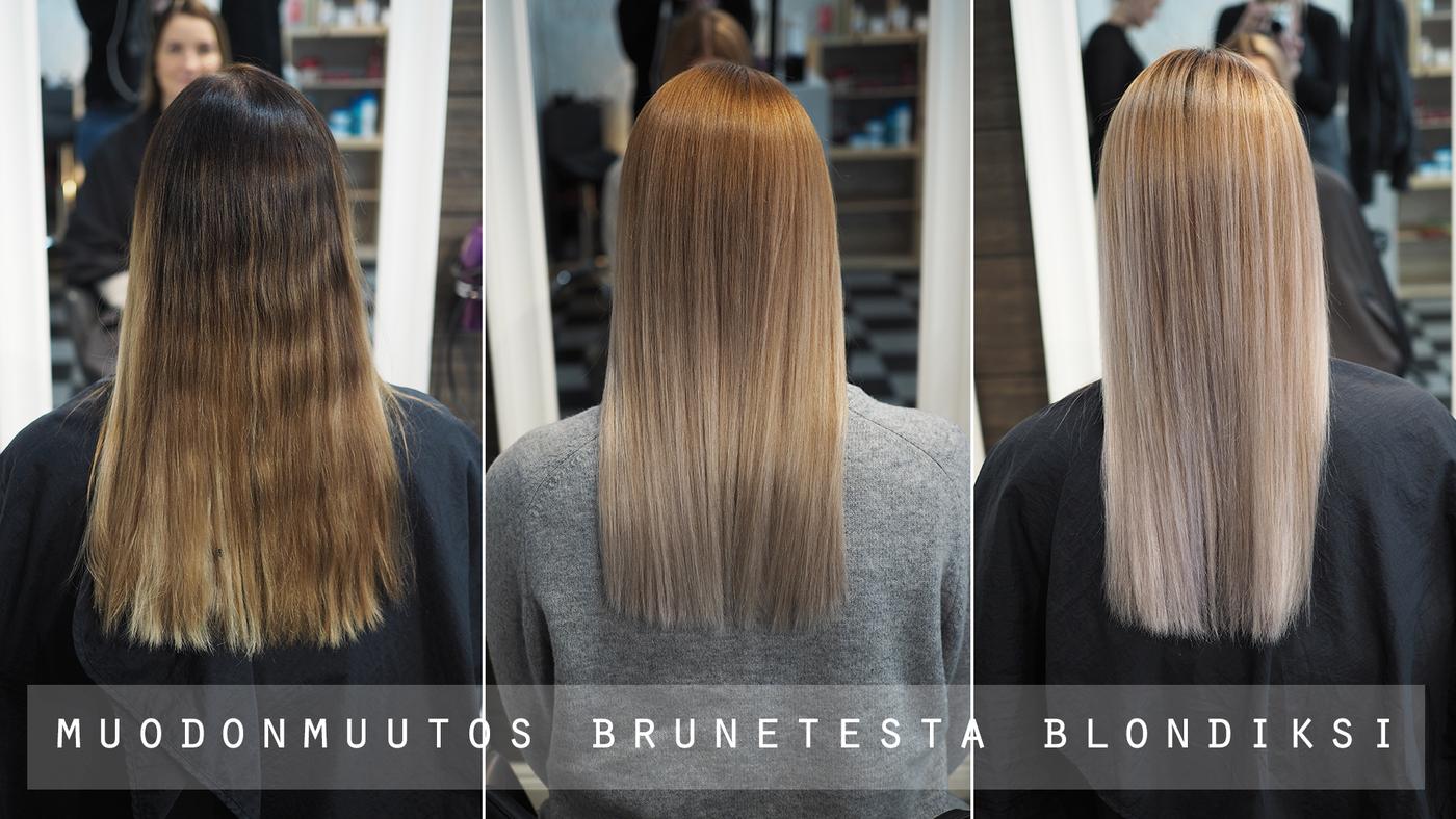 blondi video.jpg
