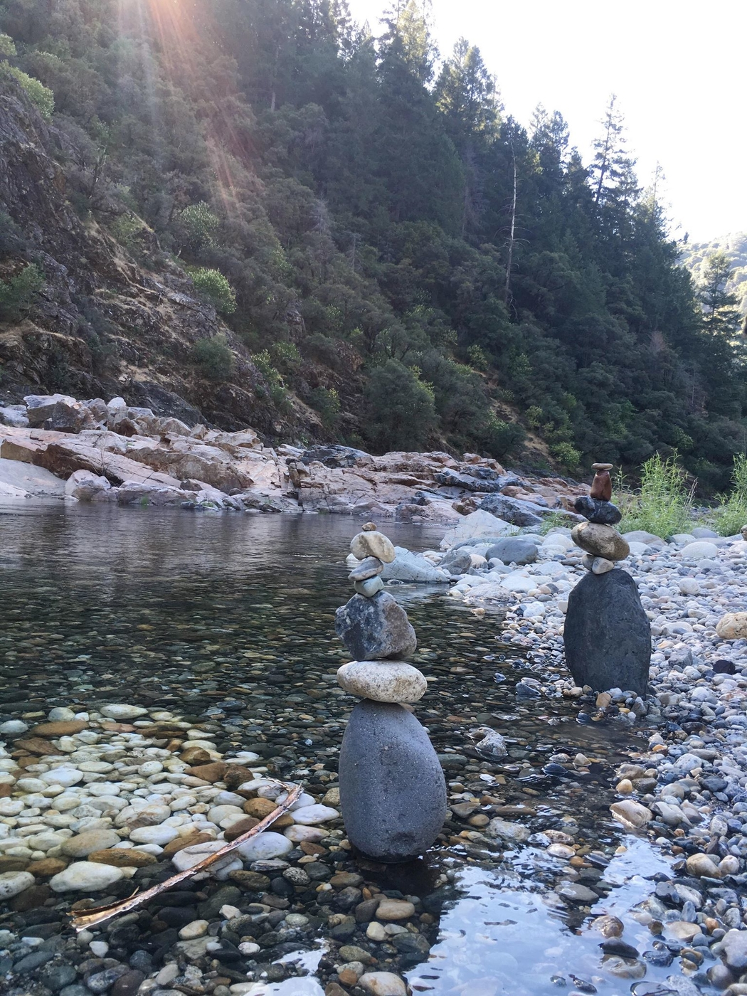 Yuba-joella: leppäkerttujen keidas