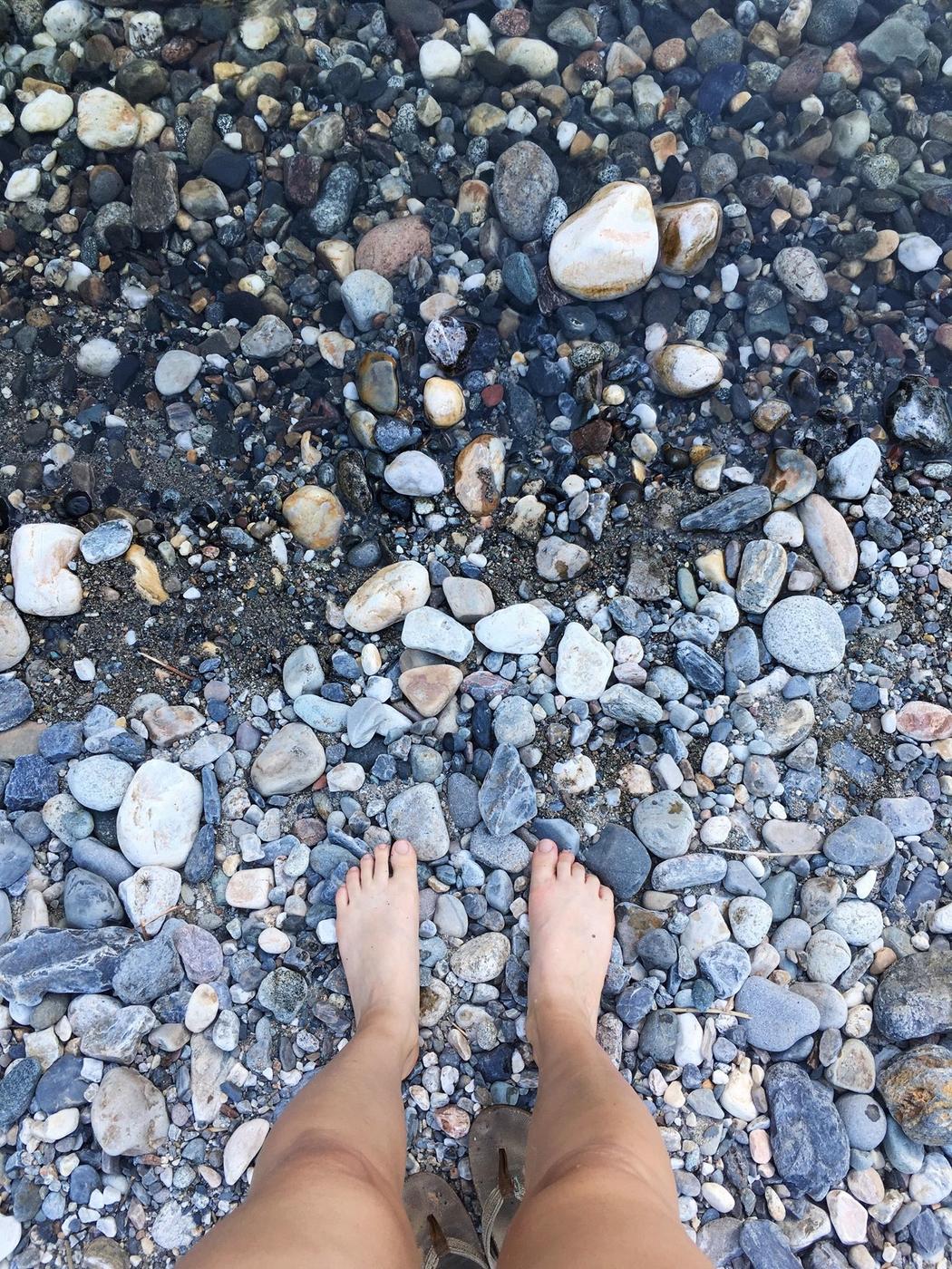 Yuba-joella: purevia leppäkerttuja