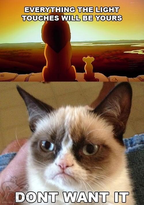 grumpy-cat-quotes3.jpg