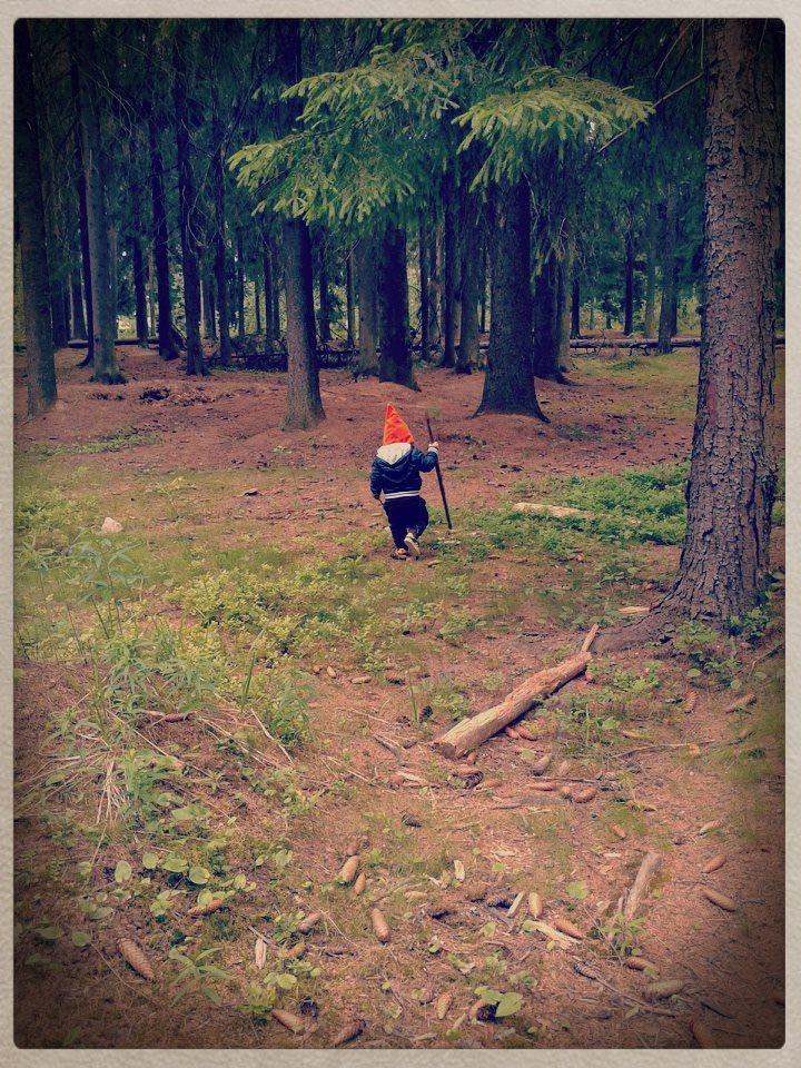 metsätonttu metsässä