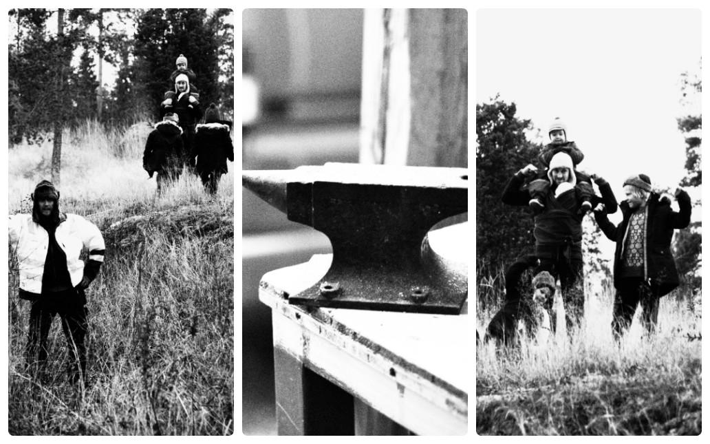 collage_photocat33.jpg