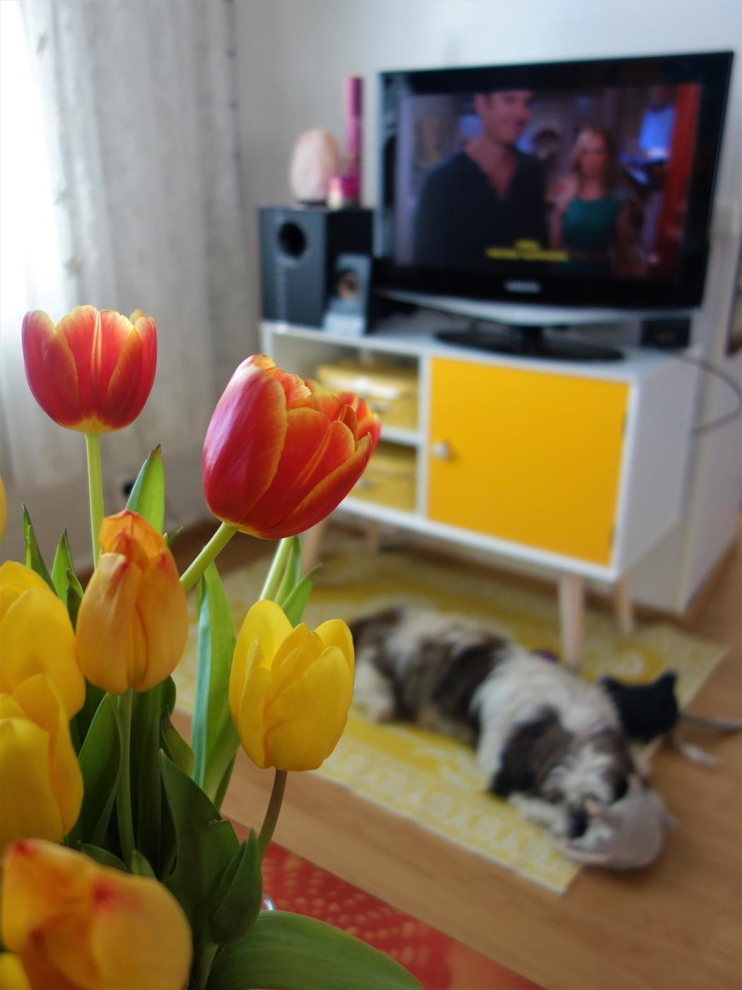 keltainen tv-taso.JPG