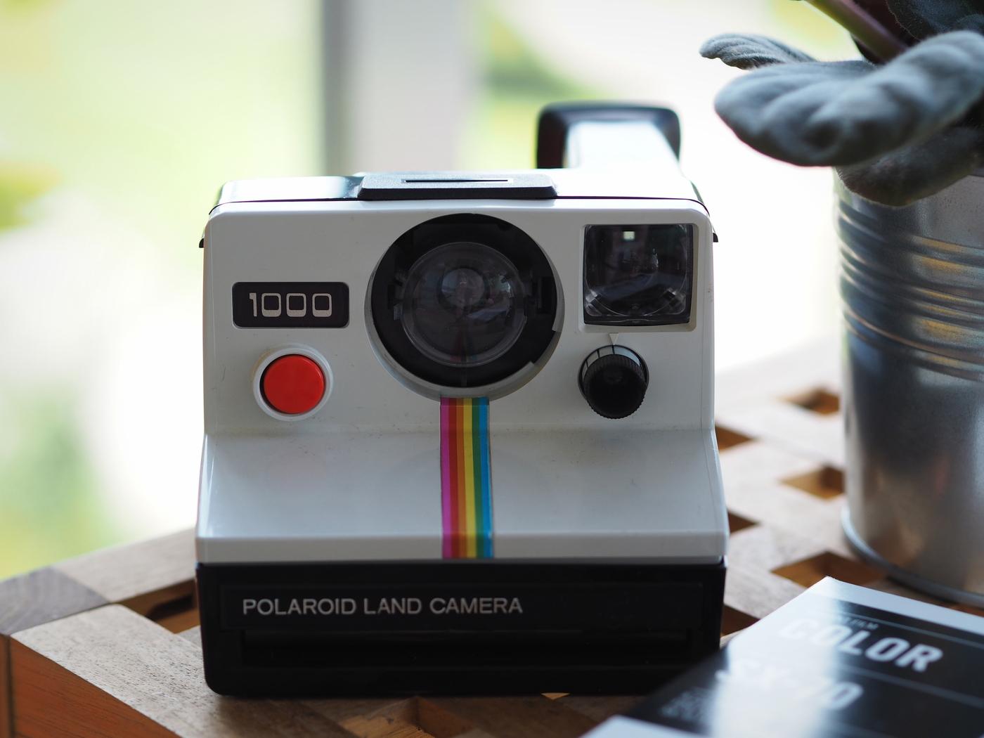 P8061883.JPG