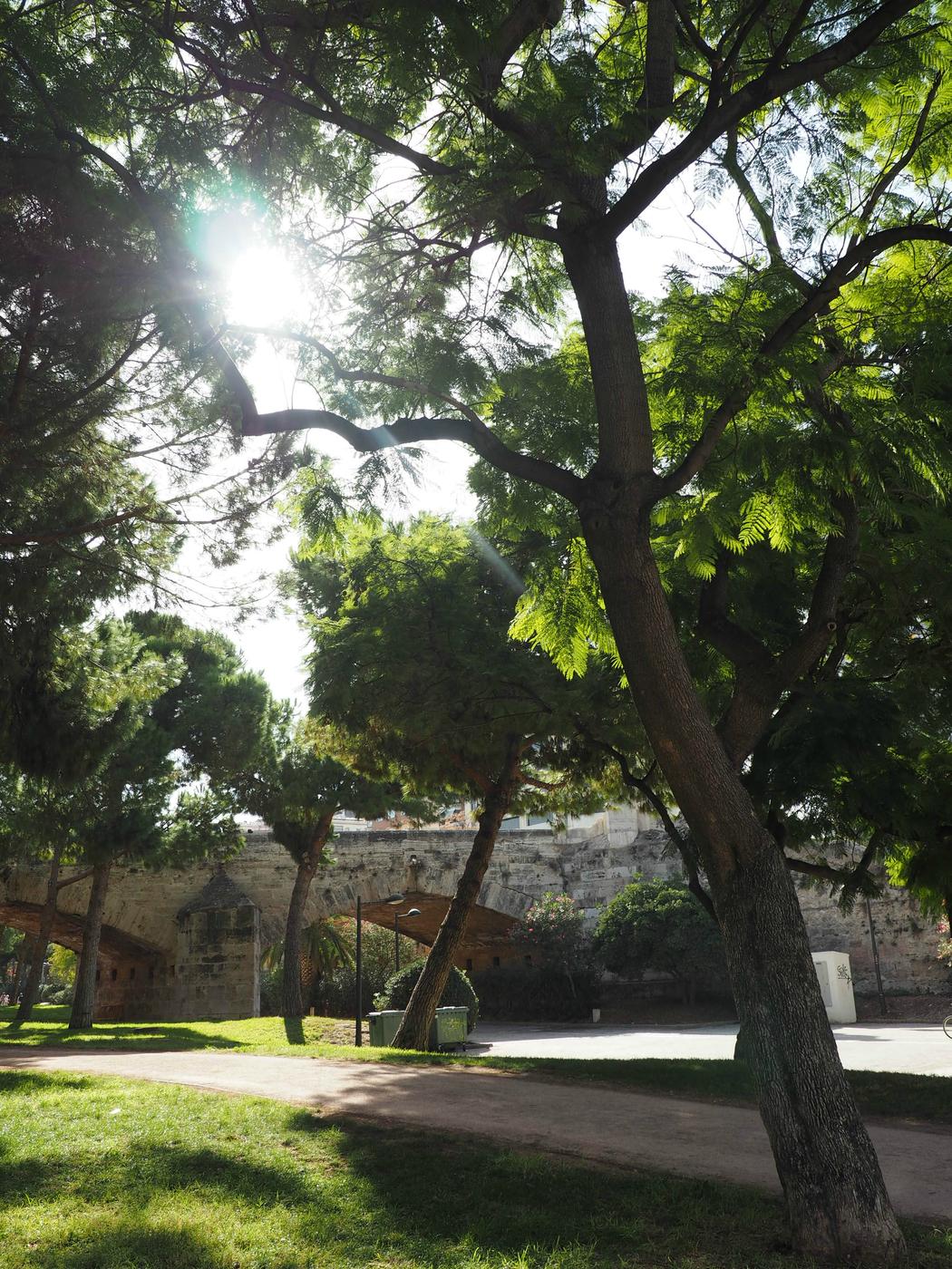 Valencia 4.jpg