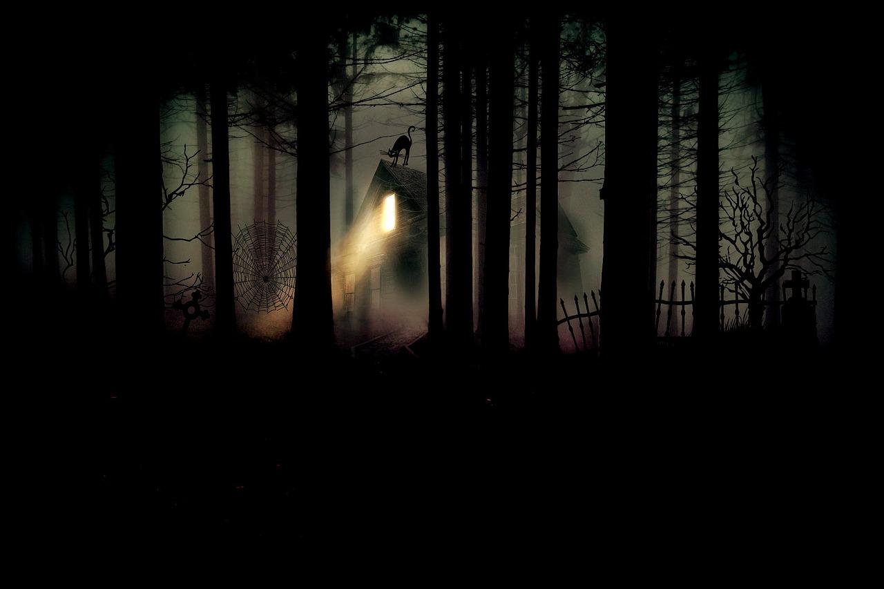 forest-704077_1280.jpg