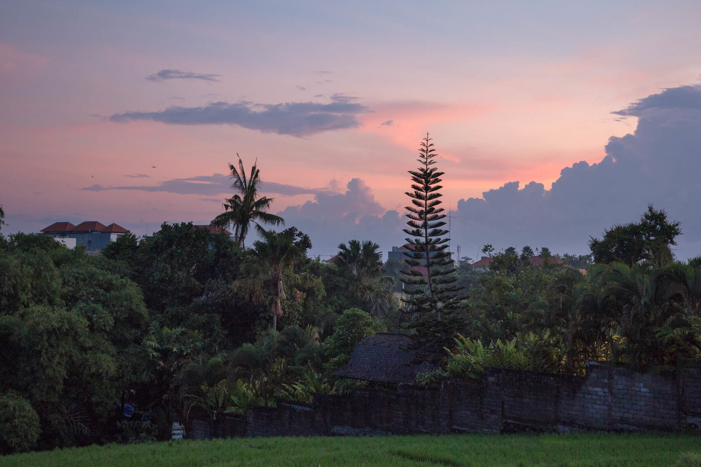 Bali days-7.jpg