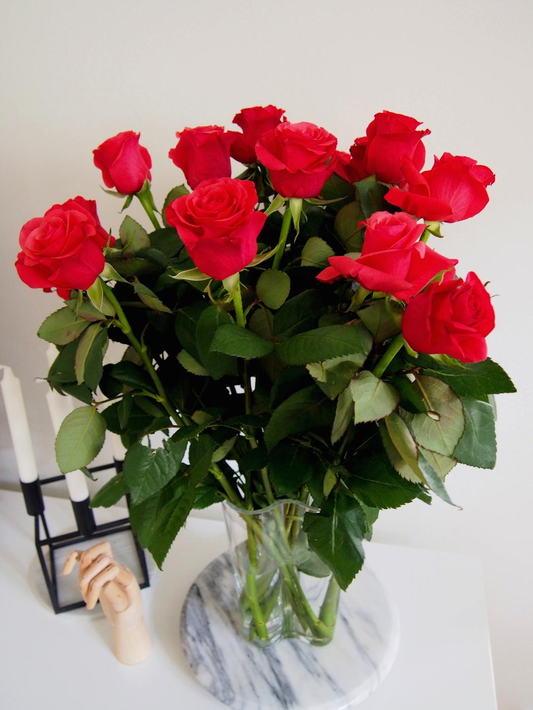 Ruusuja_.JPG