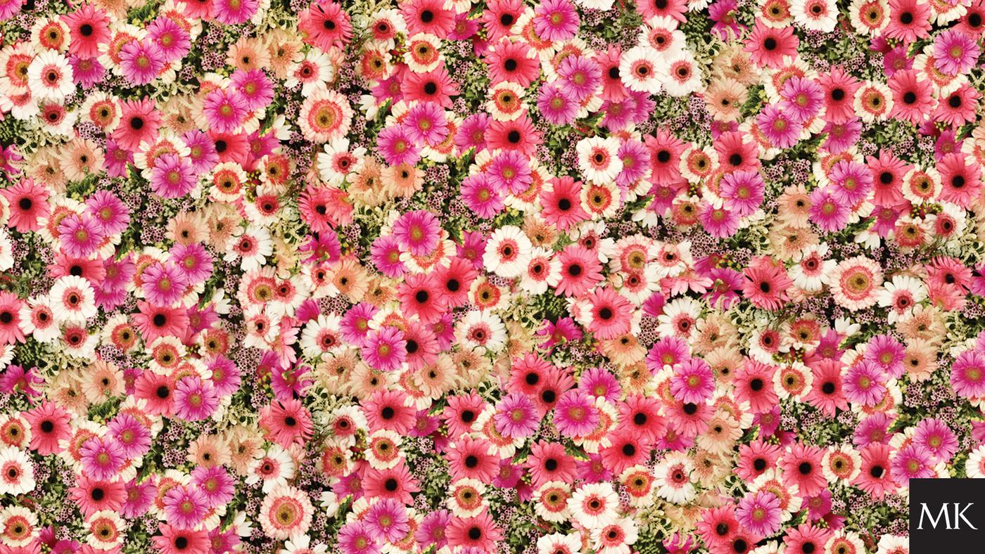 DWYL-wallpaper-desktop-2560x1440-flowers.jpg