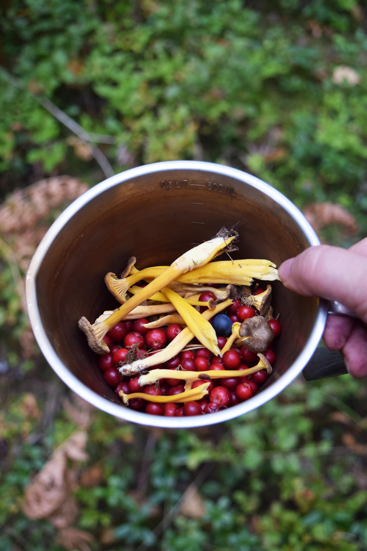 mökkillä syksyllä3.jpg