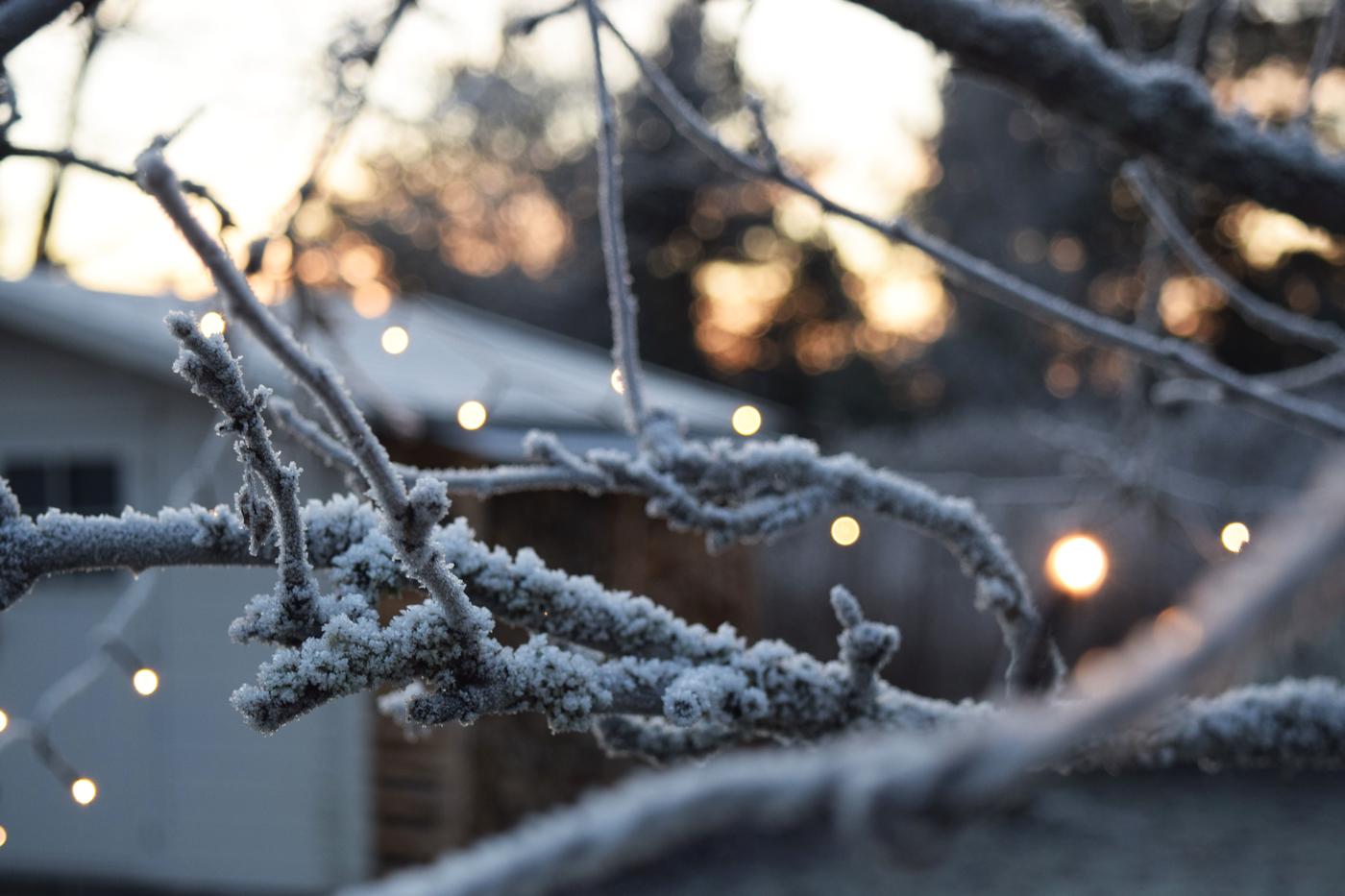 joulukuun valo3.jpg