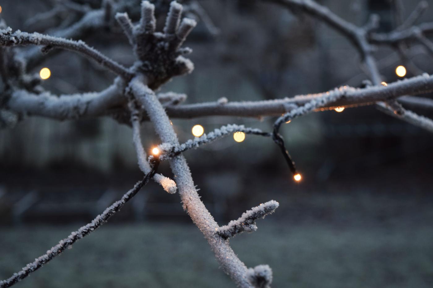 joulukuun valo2.jpg