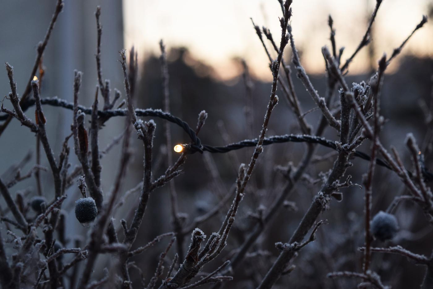 joulukuun valo5.jpg